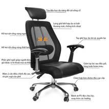Mô tả ghế OC817