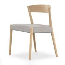 Ghế Ronda lưng gỗ nhiều màu