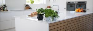 căn bếp thân thiện với môi trường